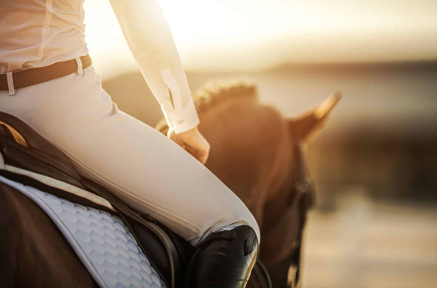 Is it time for you to take your business reins?