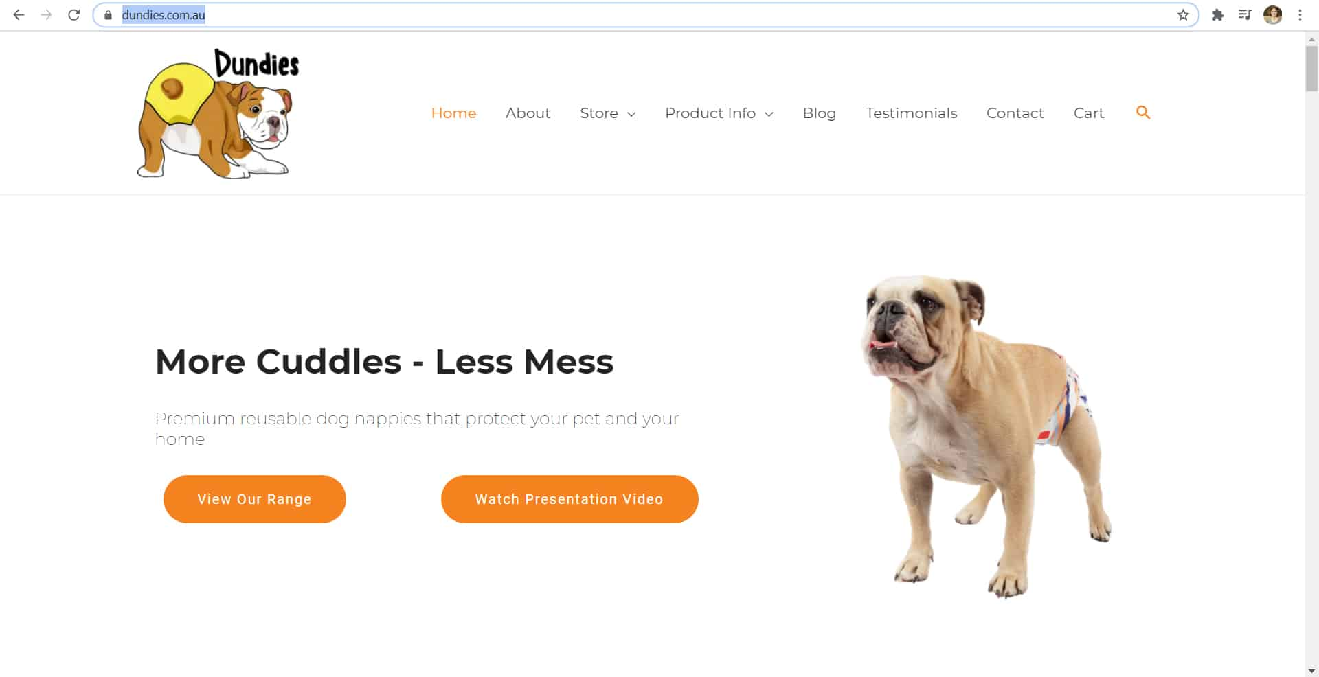 Dundies New Website - The Rural Copywriter
