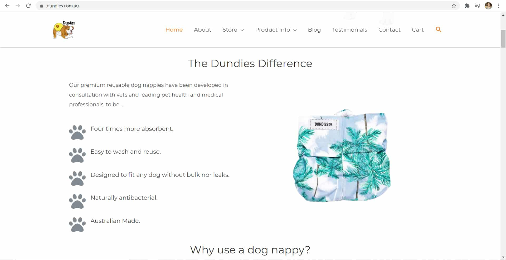 Dundies New Website Home Page - The Rural Copywriter