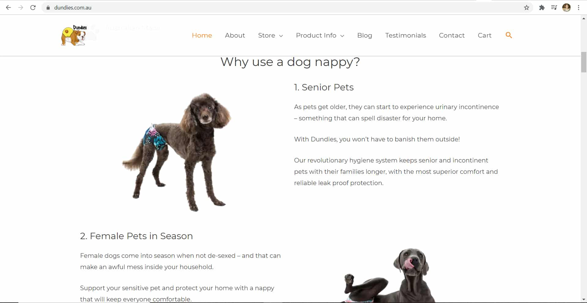 Dundies New Home Page 2 - The Rural Copywriter