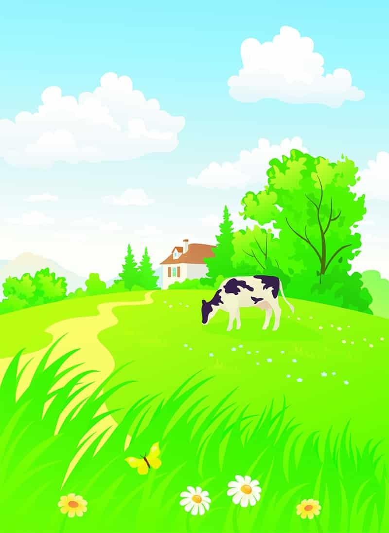 Rural Website Design - The Rural Copywriter