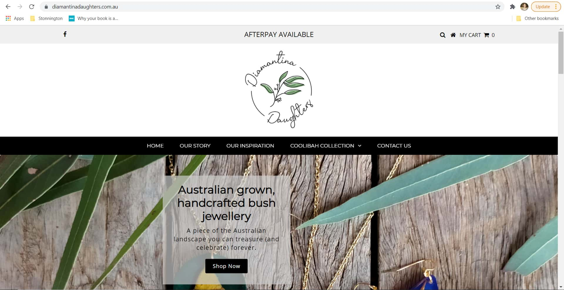 Diamantina Daughters - SEO Website Copywriting - Page 1